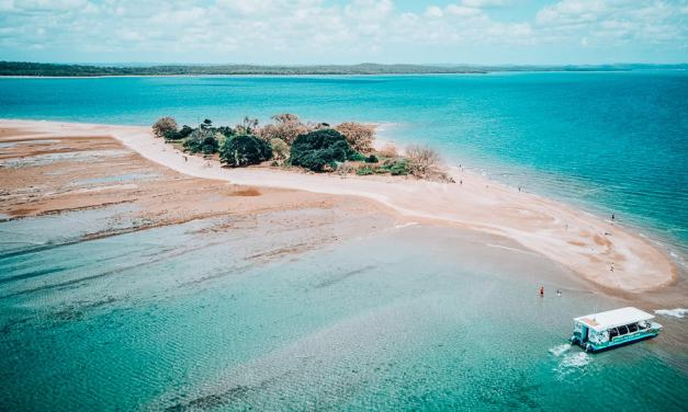 Discovering Hervey Bay with Hervey Bay Eco Marine Tours