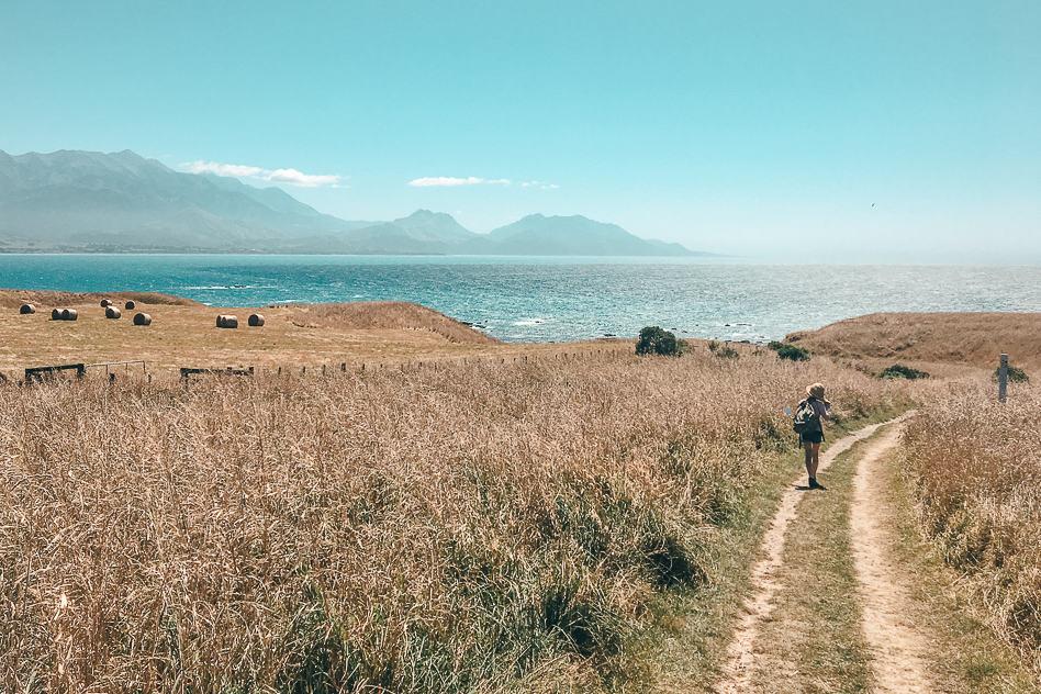 Kaikoura Walk Cliffs Beach Nature
