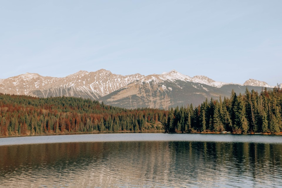 Jasper National Park | Free Travel Guide on where to stay, what to do and what to eat when in Jasper National Park, Alberta, Canada