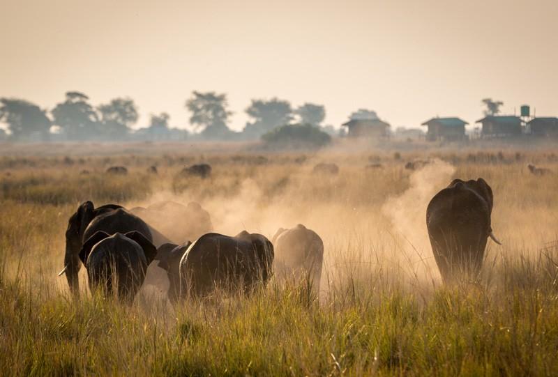 Trois activités à faire en Tanzanie