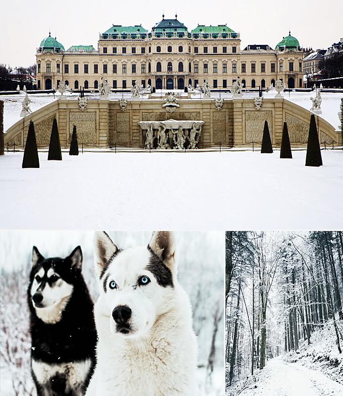 Trois activités à faire en Autriche