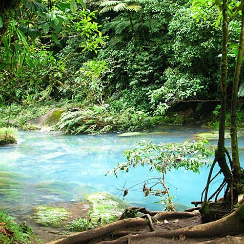 réserve de monteverde costa rica randonnée paysages