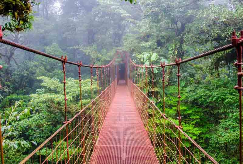 reserve de monteverde volcan arenal costa rica