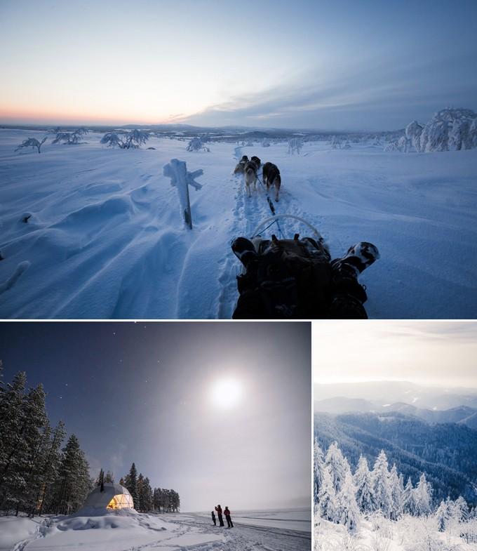 Safari en chien de traineau Rovaniemi Finlande a faire