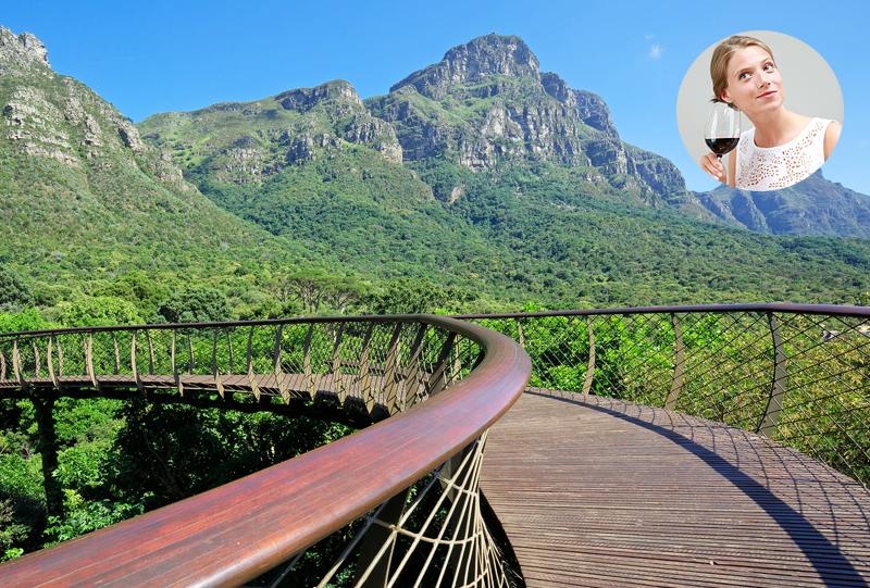 Jardin Botanique de Kirstenbosch Le Cap Afrique du sud a faire