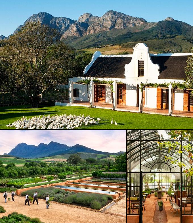 Le Cap vignobles Afrique du sud a decouvrir