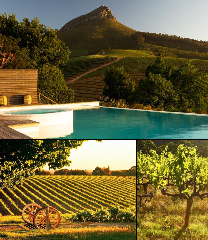 Le Cap vignobles Afrique du sud a faire
