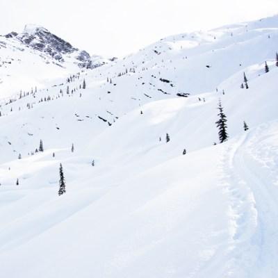 4121-revelstoke-ski-half