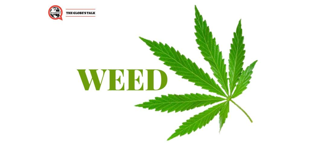 Will Weed See a new Dawn in India finally