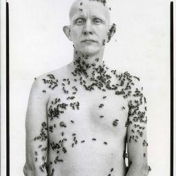 ART TALK: RONALD FISCHER, BEEKEEPER