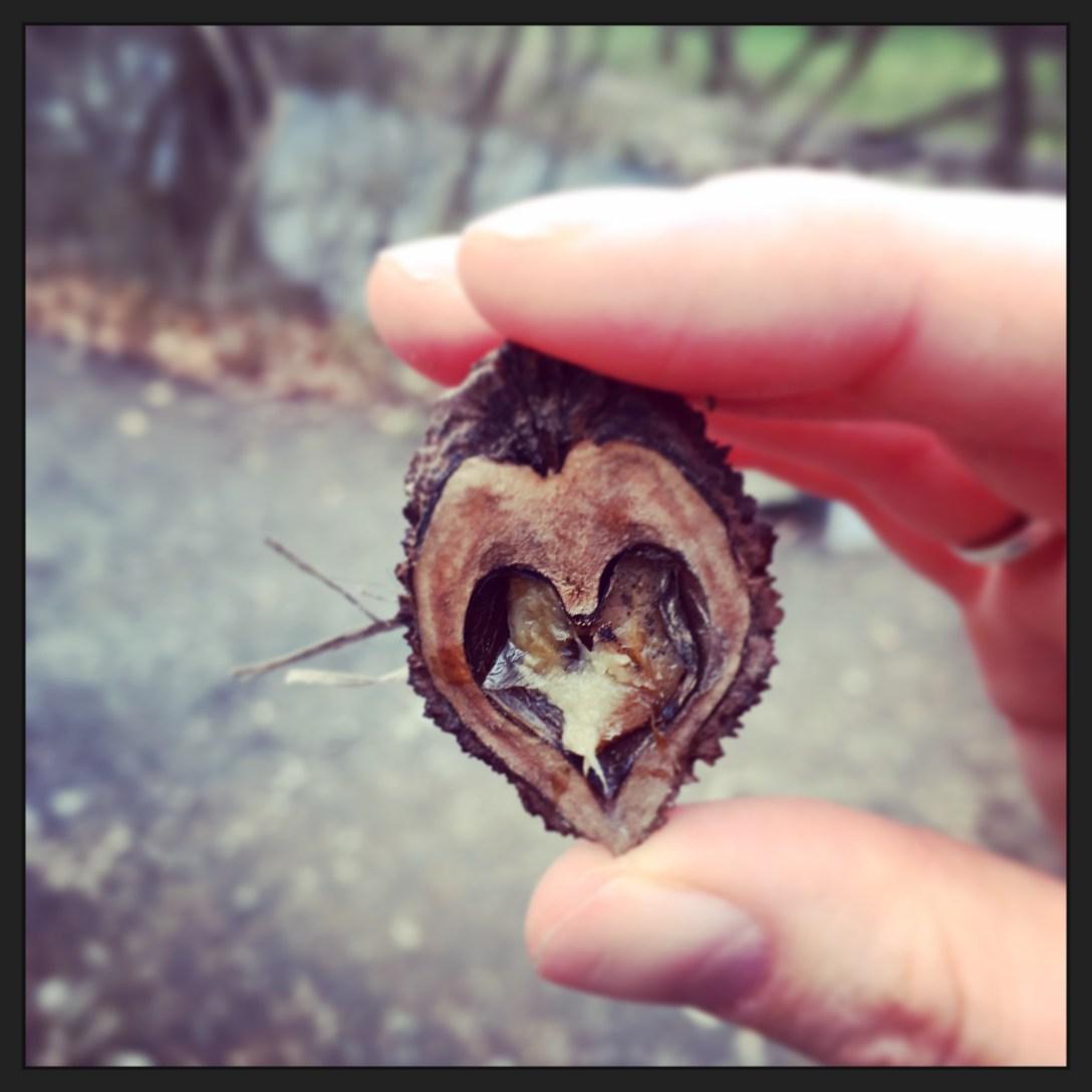 mothersday.chestnut