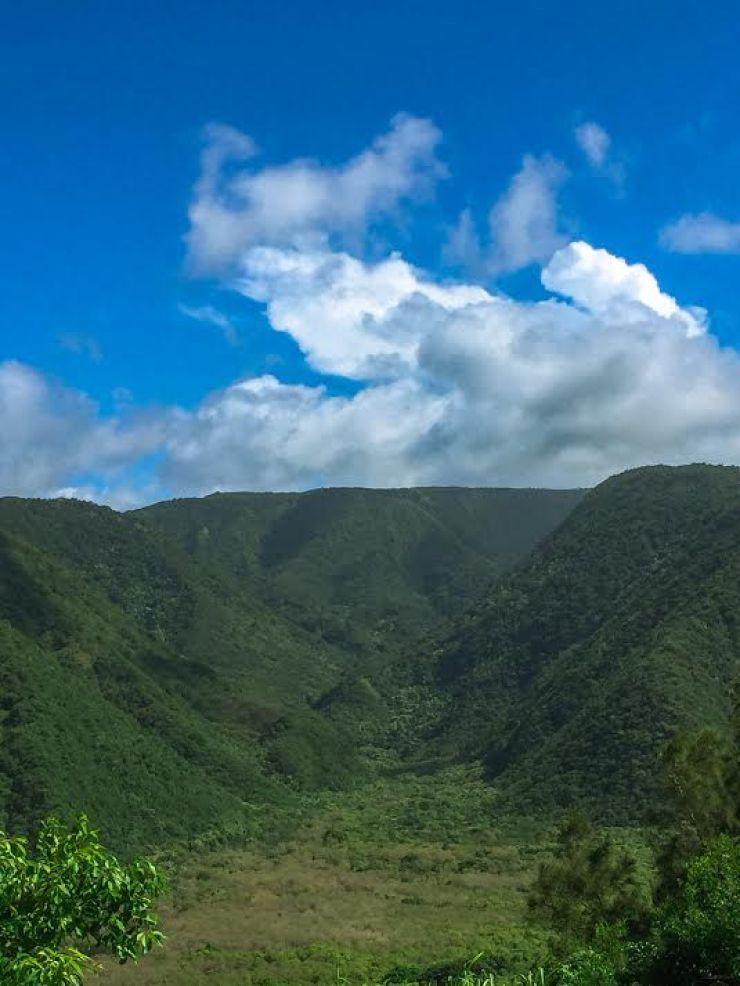 Big Island lush valley