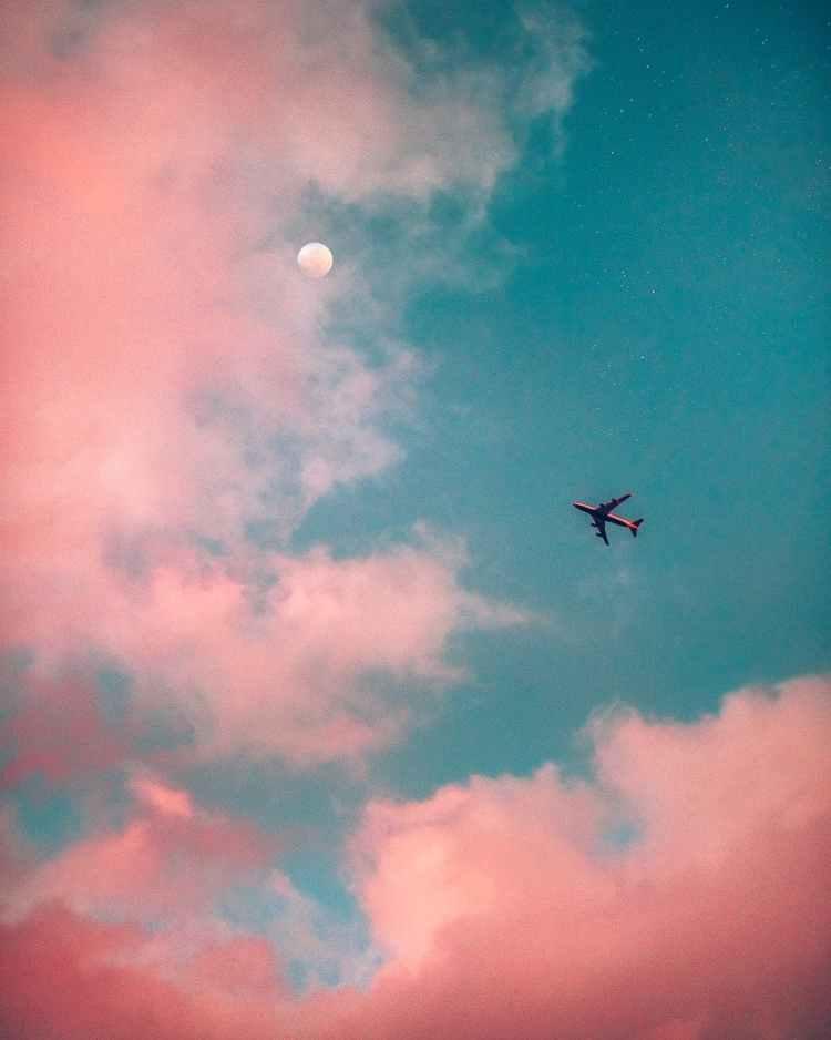 white airliner for January travel