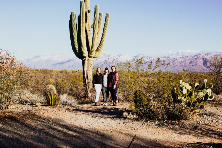A national parks road trip success with three friends standing next to a king saguaro cactus on the East side of Saguaro National Park.