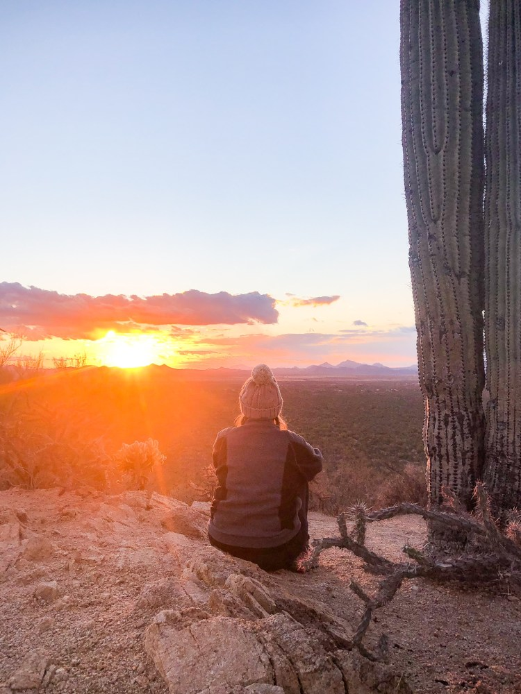 Woman sitting next to a giant Saguaro cactus at a sunset overlook at Valley view inside Saguaro National Park