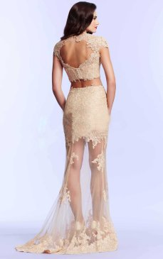 Fabulous-Floor-length-Lace-Sheath-Prom-Dresses-3877-1