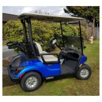 Yamaha PTV Drive 2 Golf Cart_The golfin Guy_1A