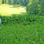 Champion Hills_The Golfin Guy