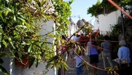 Granadilla clad walls in Alberobello