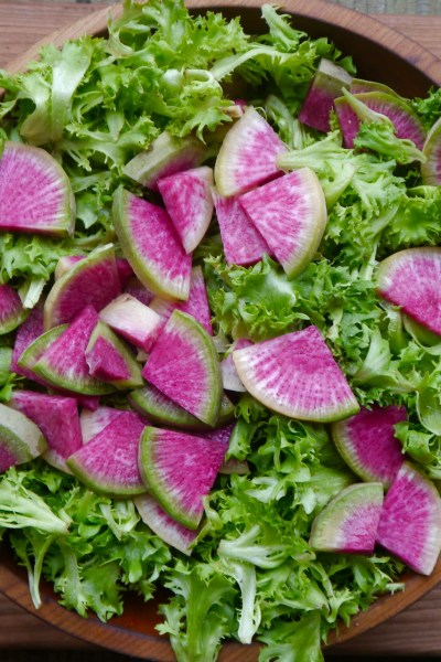 Watermelon Radish: the unsung hero of storage vegetables