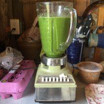 organic green smoothie in blender