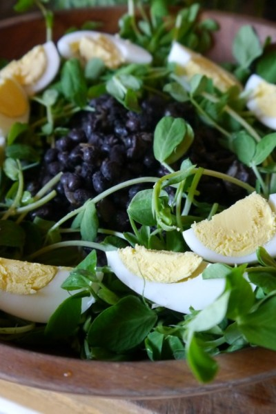 Quick & Easy Salads for Spring