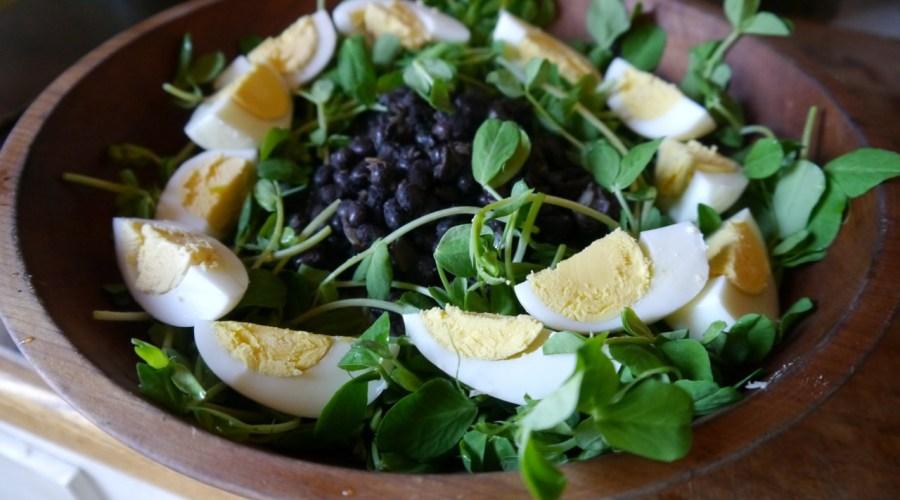 fast & easy spring meal: pea shoot black bean salad