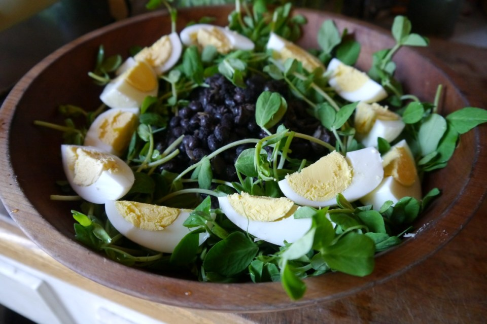 a fast and easy meal for spring: pea shoot black bean salad