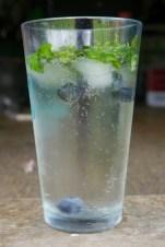 blueberry mint spritzer