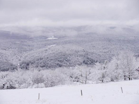 Winter view at Good Heart Farmstead