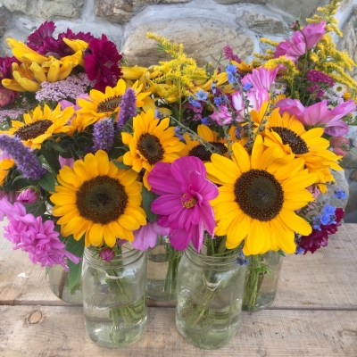 Soraya Sunflowers, Sensation Mix and Double-Click Cosmos, and Anise Hyssop in beautiful bouquets