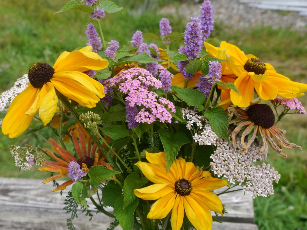 organic cut flower bouquet with easy-to-grow flowers