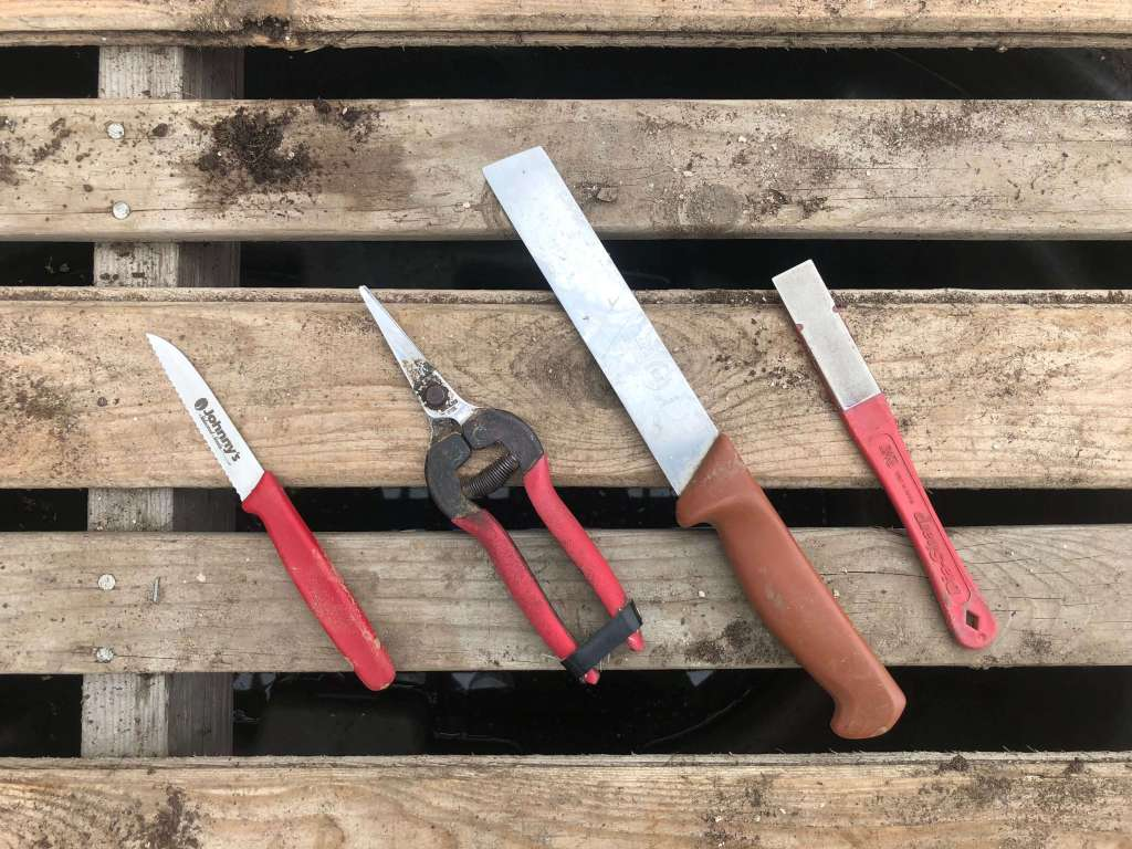 harvest tools: serrated knife, tomato shears, stainless steel produce knife & diamond hone: the best tools for organic market farmers & gardeners