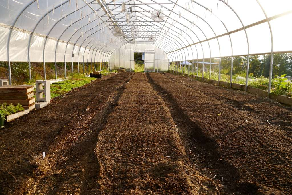 Greenhouse beds prepared for a new succession planting