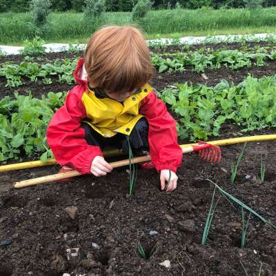 5 Meaningful Ways to Grow A Connection to the Land & Your Food