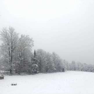 Winter at Good Heart Farmstead