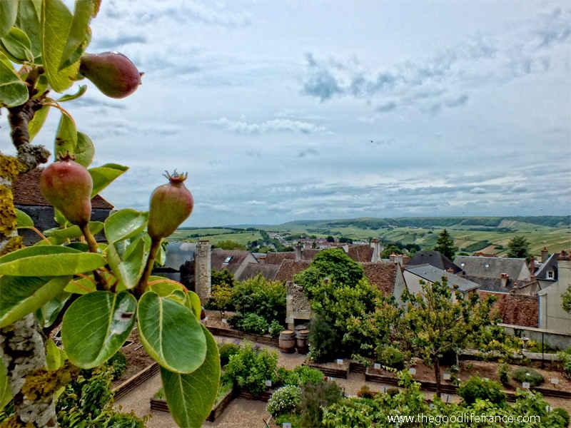 sancerre view over the vineyards
