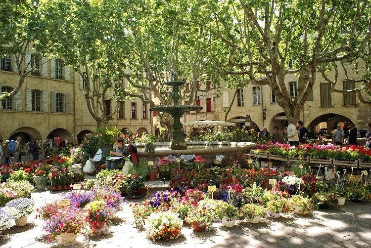 Flower market spread out in a square in Uzes, southern France
