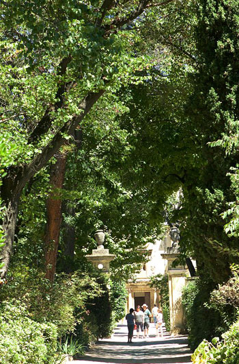 Tall leafy trees shade the avenue leading to a stone building in Provence