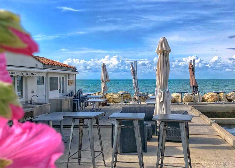 View over the sea from a pretty cafe where hollyhocks grow Ile de Re