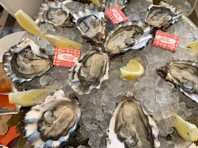 Oysters on a plate of ice
