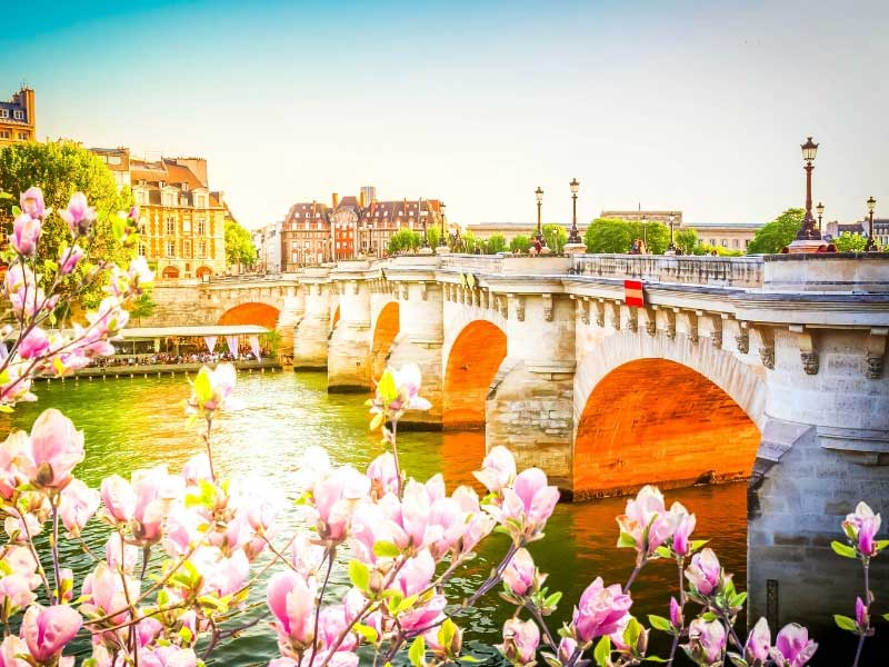 Trees blossom along the banks of the River Seine in Paris at spring