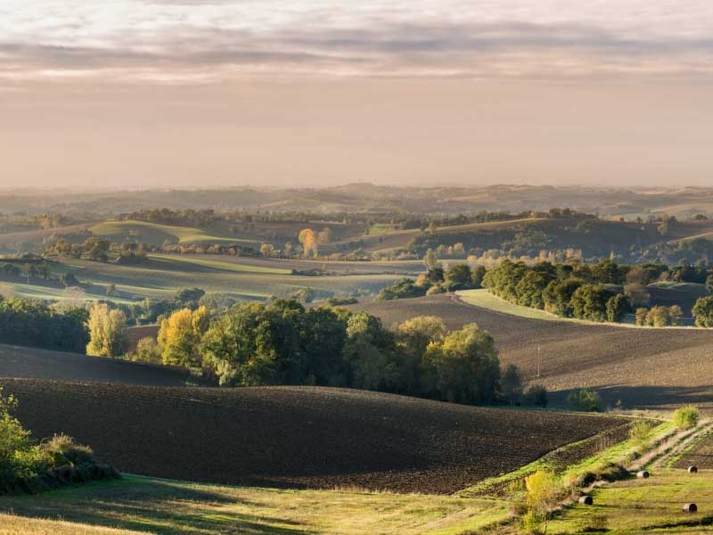 View over the countryside in Gers, Gascony - grassy hills, forests, fields and vineyards