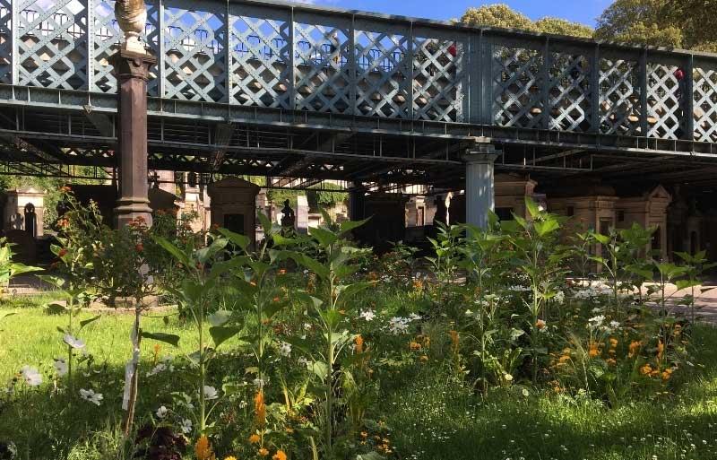 Metal footbridge crosses Montmartre Cemetery