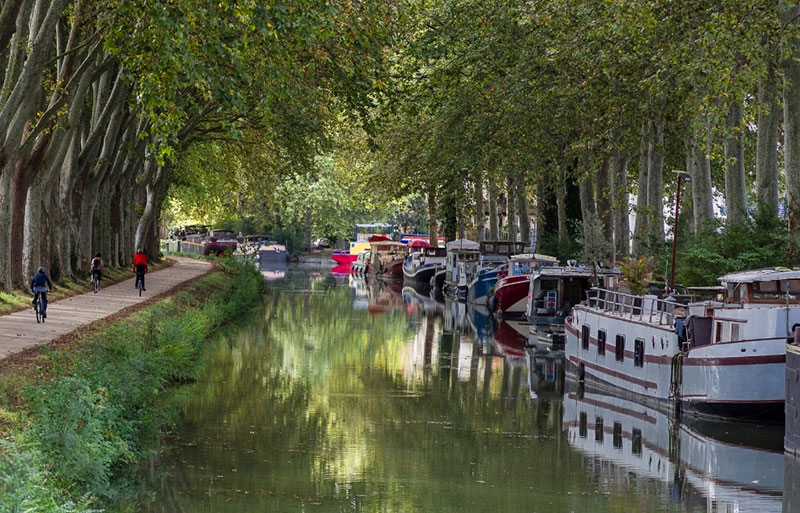 Cyclists on the towpath of the Canal du Midi