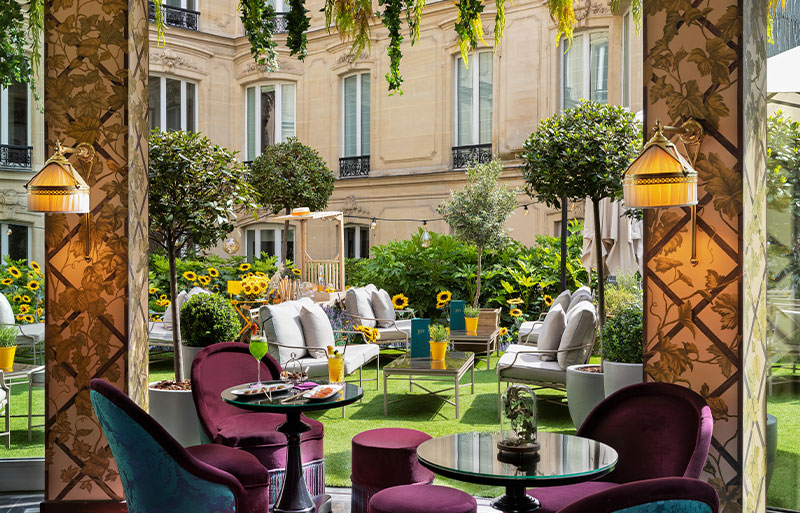 Terrace area of restaurant with topiary pot plants and sunflowers