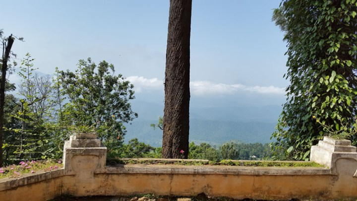 A getaway in the clouds: O'Land Plantation in the Nilgiri hills