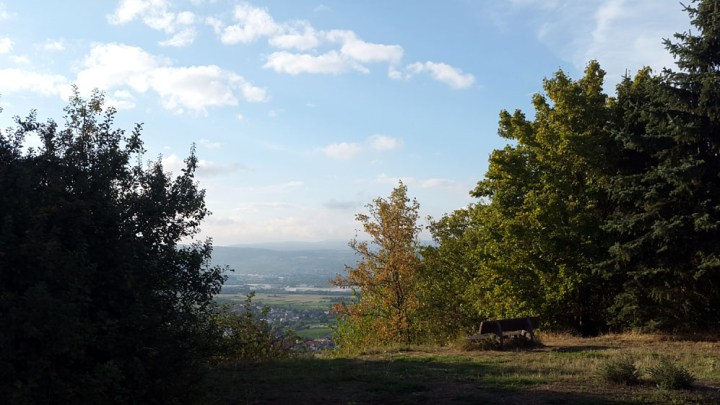 Secret viewpoint near Gau-Algesheim