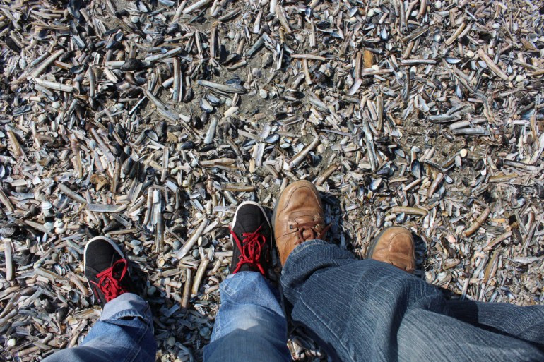 Razor clam shells - A road trip through Germany, and other ways to pass the time (Part 2): Brussels and Nieuwpoort