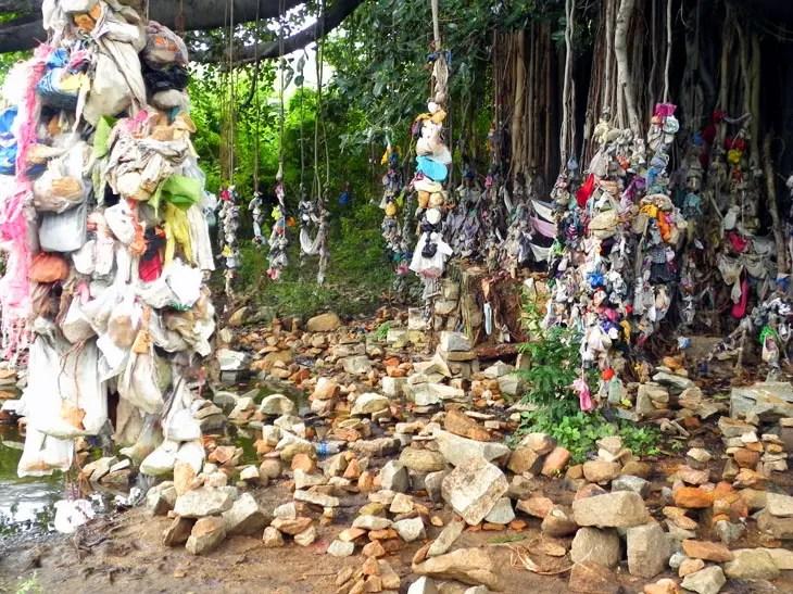 Hampi_RiversidePath_BanyanTree - Magical sights of Hampi